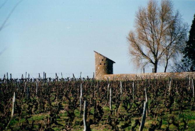 Château de Montcrochet : pigeonnier